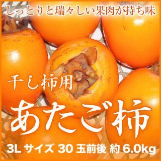 あたご柿 干し柿用セット(説明書・吊るし紐付き)  3Lサイズ 30玉前後 約6.0kg