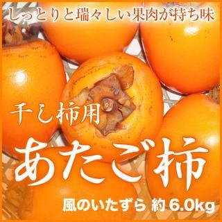あたご柿 干し柿用セット(説明書・吊るし紐付き)  風のいたずら 約6.0kg 柿の大きさ、数はおまかせ下さい
