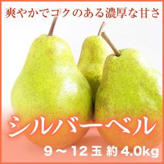 シルバーベル 9〜12玉 約4.0kg