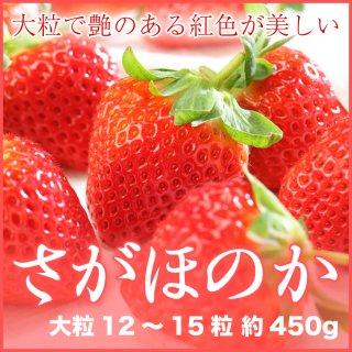 岡山県産 いちご さがほのか 大粒 12〜15粒 約450g 化粧箱入り