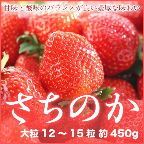 岡山県産 いちご さちのか 大粒 12~15粒 約450g 化粧箱入り