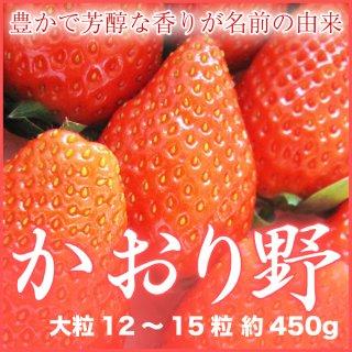 岡山県産 いちご かおりの 大粒 12〜15粒 約450g 化粧箱入り