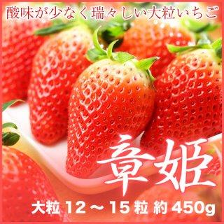 岡山県産 いちご 『章姫』(あきひめ) 大粒 12〜15粒 (約450g) 化粧箱入り