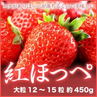 岡山県産 いちご 『紅ほっぺ』 大粒 12〜15粒 (約450g) 化粧箱入り