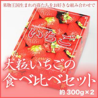 岡山県産 『大粒いちごの食べ比べセット』 一品種12〜15粒 約300g×2