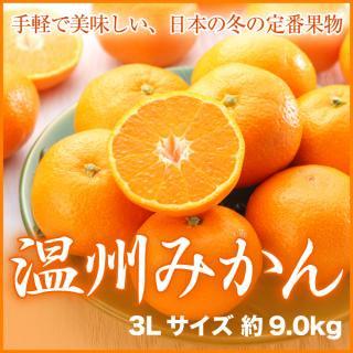 徳島県産 本貯蔵みかん 3Lサイズ 約9.0kg 箱入り