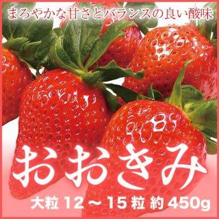 岡山県産 いちご 『おおきみ』 大粒 12〜15粒 (約450g) 化粧箱入り