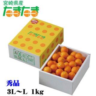 完熟きんかん たまたま 大粒 3Lか2L  約1kg  宮崎県産 化粧箱入り