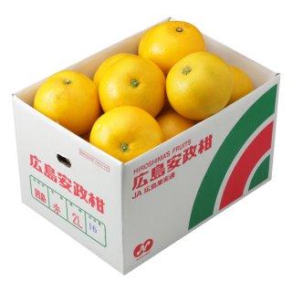 安政柑 風のいたずら 約10kg 広島県 (因島産) 大きさ、数はおまかせ下さい。3月下旬ころより発送