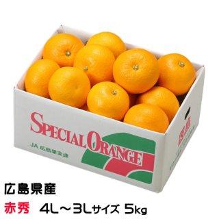 【発祥の地】広島県(因島産)『八朔』(はっさく) 秀品大玉  3Lサイズ  約10.0kg