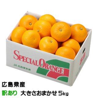 【発祥の地】広島県(因島産)『八朔』(はっさく) 秀品 Lサイズ 約10.0kg