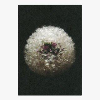 ポストカード 「花は語る」10枚セット