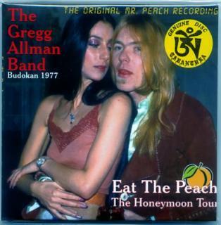 The Greg Allma Band