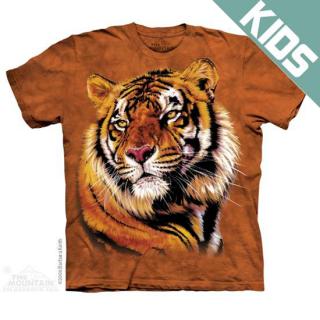 パワー&グレイス キッズTシャツ (トラ)