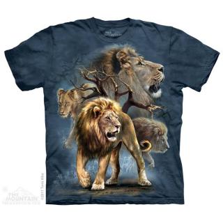 ライオンカレッジ Tシャツ (ライオン)