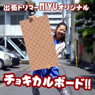 出張トリマーMIYUオリジナル【チョキカルボード】犬用トリミング台・テーブル