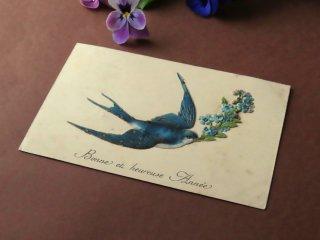 アンティーク絵葉書『燕と勿忘草』