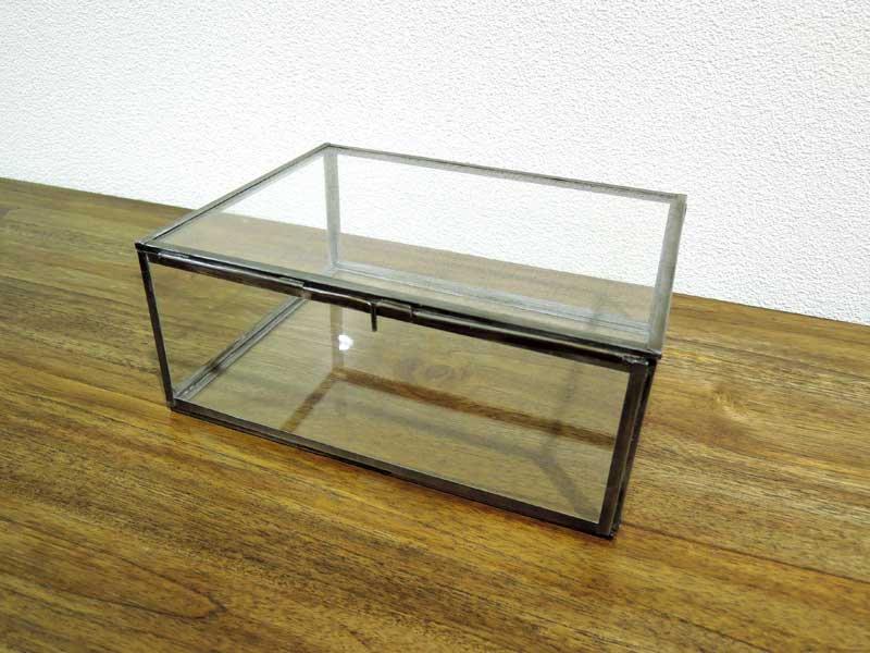 ガラスコレクションボックス L<br>
