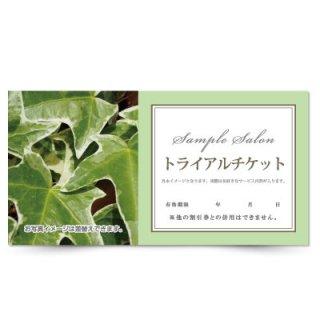 【クーポンチケット・割引券】アロマ・オーガニックサロンの体験チケットナチュラルデザイン04