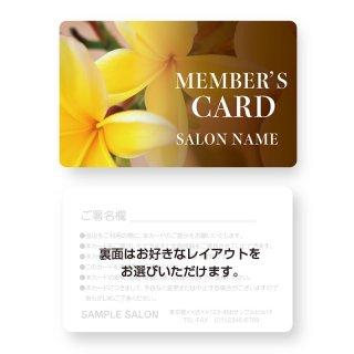 【紙製・PETカード】サロン会員カード・メンバーズ・VIPカードデザイン18(角丸)