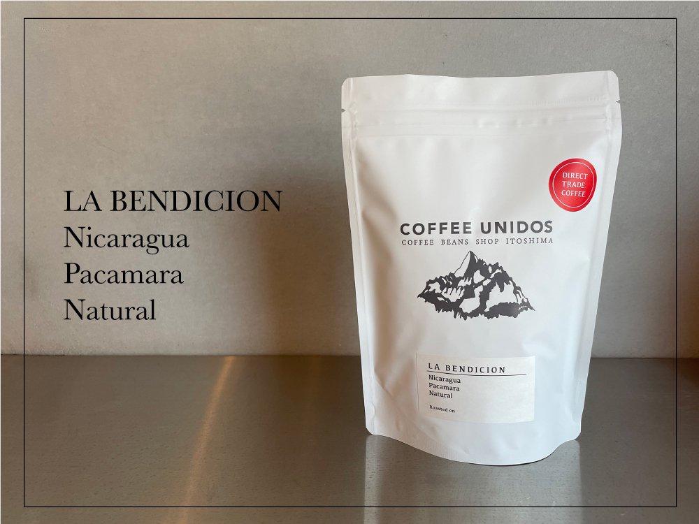 【コーヒー豆 中煎り】ラ・ベンディション農園 パカマラ種 ナチュラル