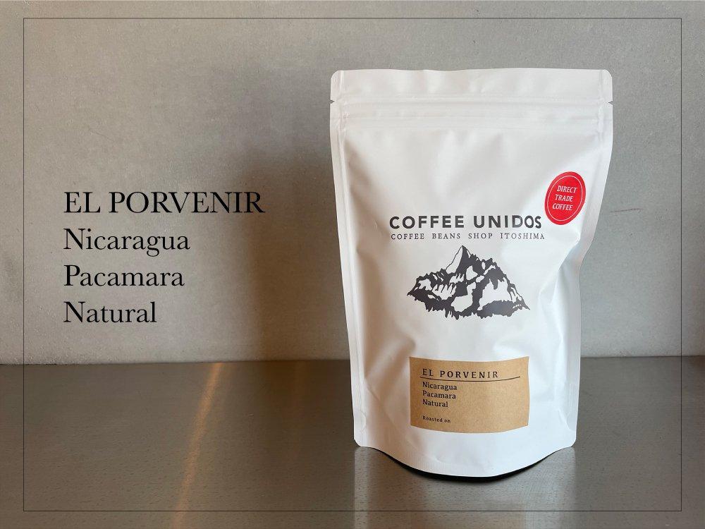 【コーヒー豆・中煎り】エル・ポルベニール農園 パカマラ種 ナチュラル