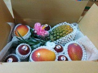 【ギフト】フルーツ箱 小