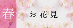 春4番 お花見