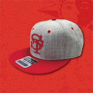 STOIST SNAPBACK CAP (Gray & Red)