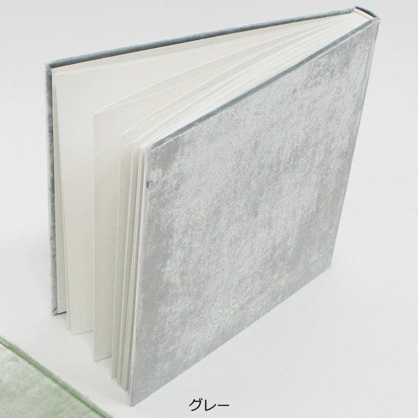 Velvet Raptor (ベルベットラプター)<br>ベルベットカバーアルバム<br>ot定番01074