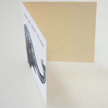 SUGARBOO DESIGNS (シュガーブーデザインズ)<br>エレファントミニカード (1枚入+封筒付)<br>ot定番01166