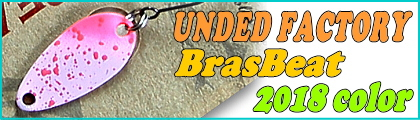UNDED FACTORY / BRAS BEAT 2018 color