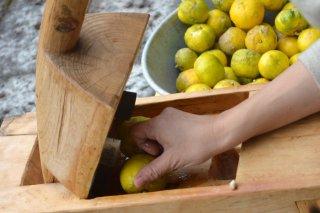 実生手絞り柚子  700ml