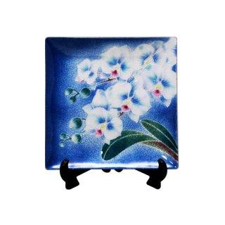 七宝焼き 飾皿 66新胡蝶蘭