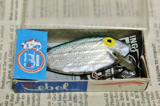 REBEL SHAD