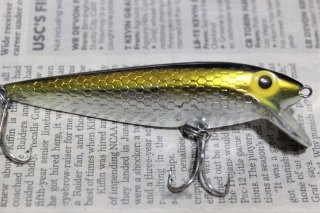 STORM THINFIN SHINER MINNOW