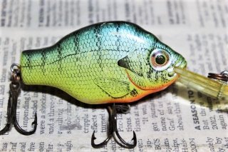 <img class='new_mark_img1' src='https://img.shop-pro.jp/img/new/icons13.gif' style='border:none;display:inline;margin:0px;padding:0px;width:auto;' />REBEL BAITFISH