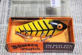 BOMBER PIN FISH