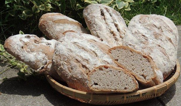 晴れの国岡山 津山産パン用ミックス粉 1�