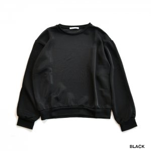 <img class='new_mark_img1' src='https://img.shop-pro.jp/img/new/icons1.gif' style='border:none;display:inline;margin:0px;padding:0px;width:auto;' />PHEENY フィーニー Nylon smooth crew neck  ナイロンスムースクルーネック PA20-CS10