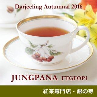 ダージリン オータムナル ジュンパナ茶園 2016 FTGFOP1 40g
