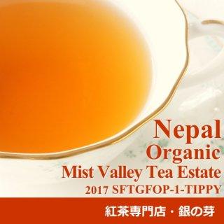 ネパール オータムナル ミストバレー茶園 2017 オーガニック SFTGFOP-1-TIPPY 50g 有機JAS認証 有機栽培紅茶