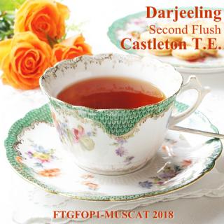 ダージリン セカンドフラッシュ キャッスルトン茶園 2018 FTGFOP1-MUSCAT 40g リーフティー