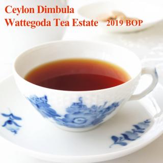 セイロン ディンブラ ワッテゴダ茶園 2019 BOP 50g