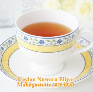 セイロン ヌワラエリヤ マハガストッテ茶園 2020 BOP 50g