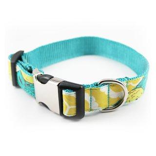 Parker Designer Dog Collar (パーカー・デザイナー・ドッグ・カラー)