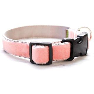 Peaches Velvet Dog Collar (ピーチ・ベルベット・ドッグ・カラー)