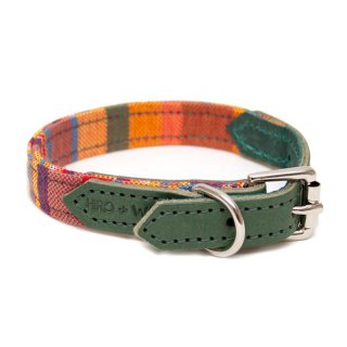 Coastal Kikoy Dog Collar (コースタル・キコイ・ドッグ・カラー)