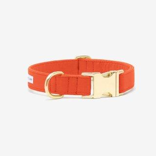 The Scot Collar, Visual Orange (ザ・スコット・カラー, ヴィジュアル オレンジ)