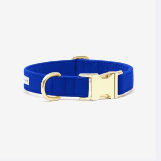 <img class='new_mark_img1' src='https://img.shop-pro.jp/img/new/icons53.gif' style='border:none;display:inline;margin:0px;padding:0px;width:auto;' />The Scot Collar, Royal Blue (ザ・スコット・カラー, ロイヤルブルー)
